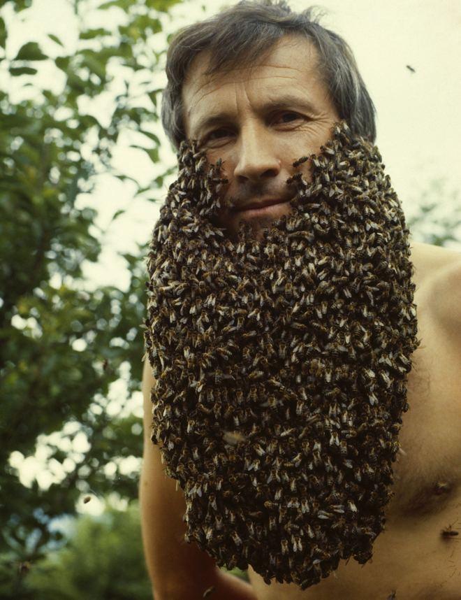 Franc Sivic mit einem Bart aus tausenden Honigbienen auf nackter Haut