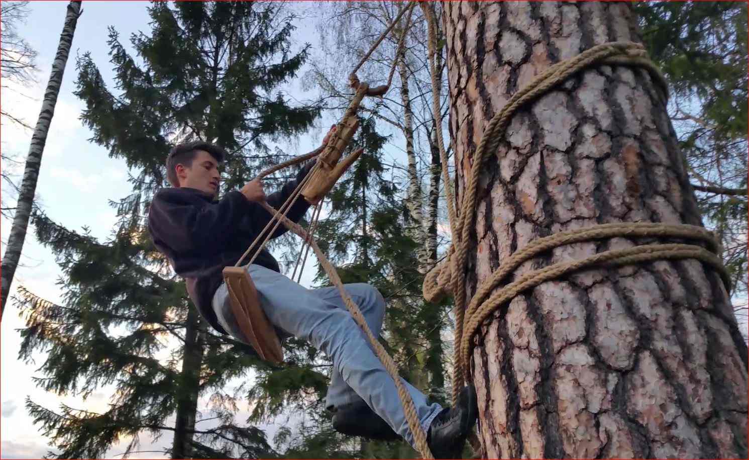 Junger polnischer Imker in der Zeidler-Tradition bei Augustow